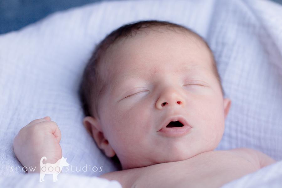 Colton Newborn-9